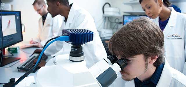 Photo of students working on research in a science laboratory