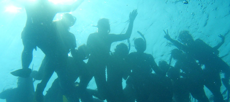 Belize Marine Biology picture