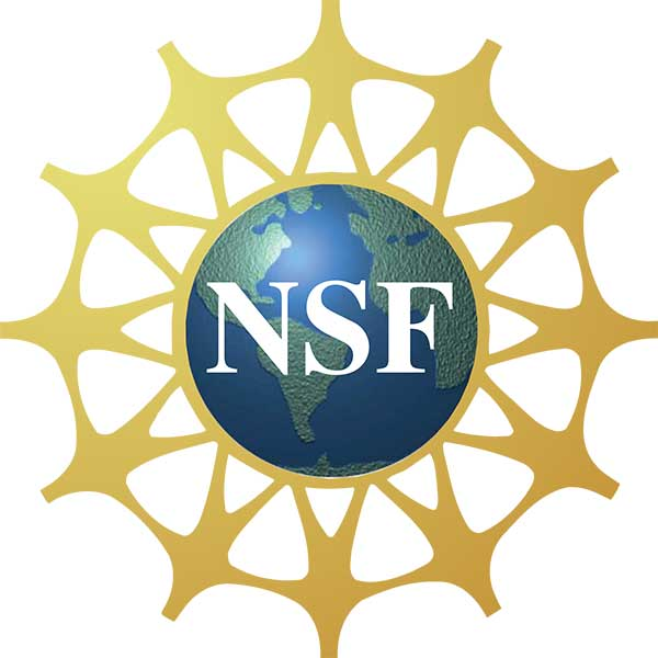 Graphic image of the National Science Foundation (NSF) logo