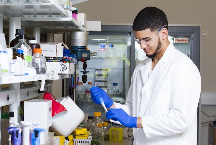 Photo of a Kennesaw State Student working on research in a science laboratory
