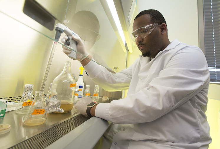 Photo of a student working on science research in a laboratory